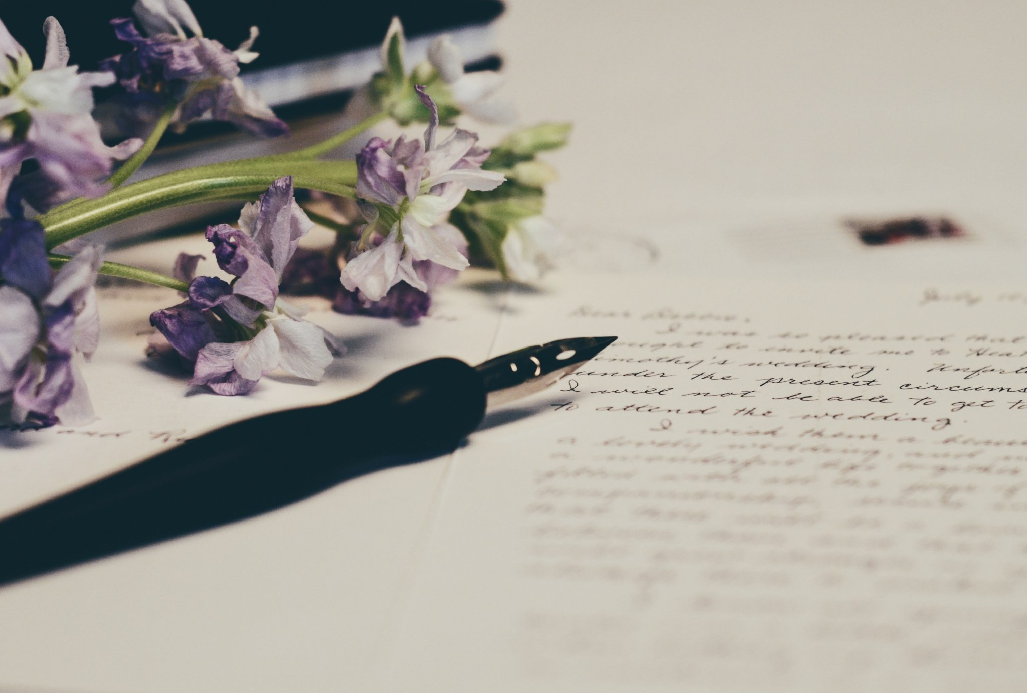 Intuitive eating letter to loved one